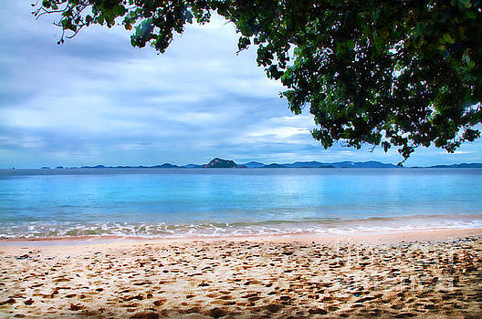 Tropical Paradise by Daniela White