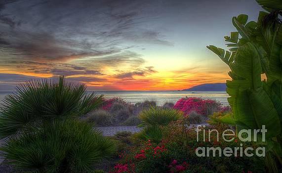 Tropical Paradise Sunset by Matthew Hesser