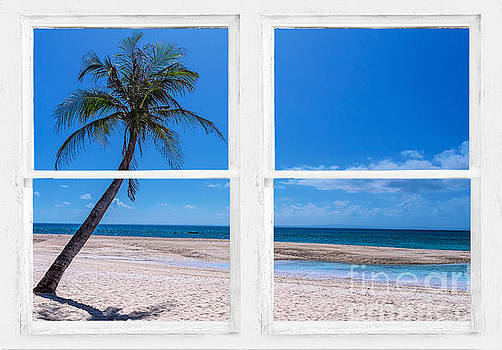 James BO Insogna - Tropical Paradise Whitewash Picture Window View