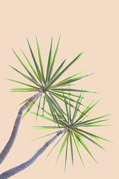 Tropical Serenity by Uma Gokhale