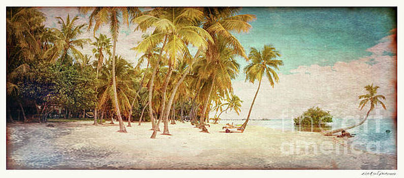 Tropical Shore Tinted by Linda Olsen