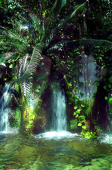Tropical Waterfall by Gulf Island Photography and Images