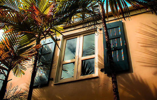 Tropical Window Reflections by Karen Wiles