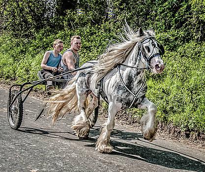 Trotting at Appleby Horse Fair by Brian Tarr