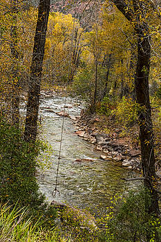 James BO  Insogna - Trout Fishing Stream Crossing Swing