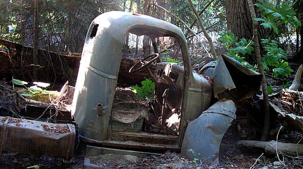 Truck by Larry Darnell