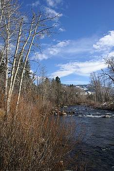 Truckee River at Verdi Nevada by Edward Hass