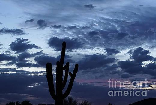 True Blue Sunrise by Deniece Platt