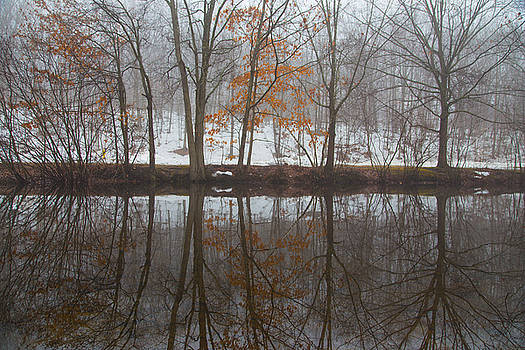 Karol Livote - Trumbulls Winter