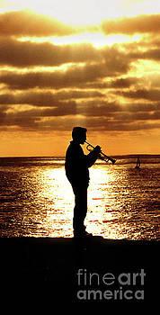 Trumpet Player by Linda Olsen