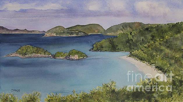 Trunk Bay Beach St John by Carol Flagg