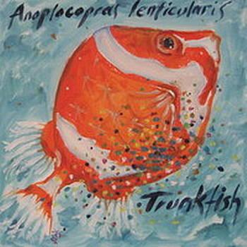 Trunkfish by Senol Sak