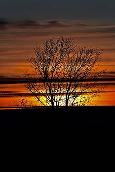Tuesday Afternoon Sunset by Dacia Doroff