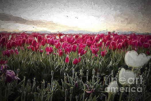 Tulip Field II by Billie-Jo Miller