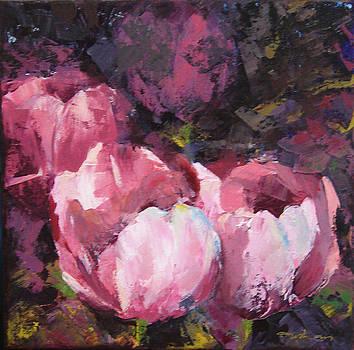 Tulip garden by Usha P