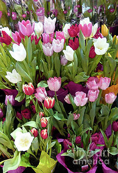 Tulips for Valentine 3 by To-Tam Gerwe