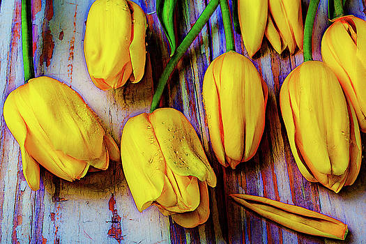 Tulips On Old Board by Garry Gay