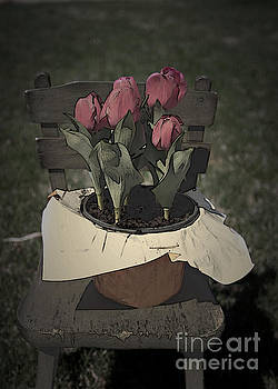 Tulips Sitting on a Chair by Sherry Hallemeier