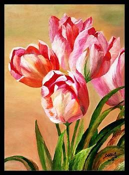 Tulips by Usha Rai
