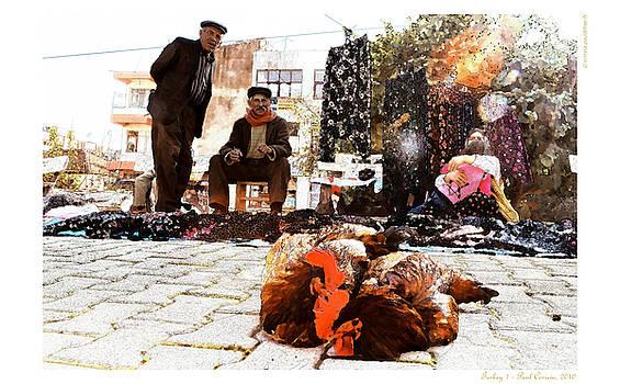 Turkey 1 by Polo Correia