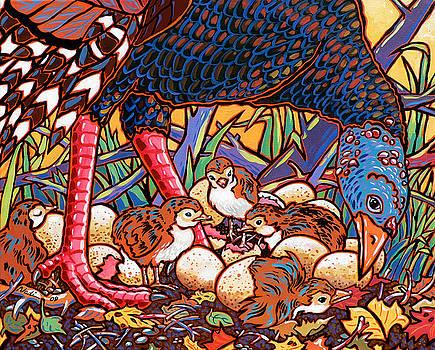 Turkeys by Nadi Spencer