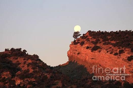 Turk's Moon by Carole Martinez