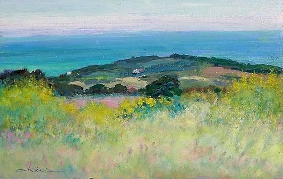 Tuscany coast panorama by Biagio Chiesi