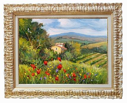 Tuscany colors landscape by Alessandra Paci