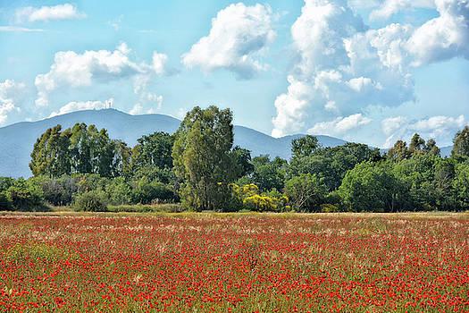 Tuscany Landscape 2 by Joachim G Pinkawa