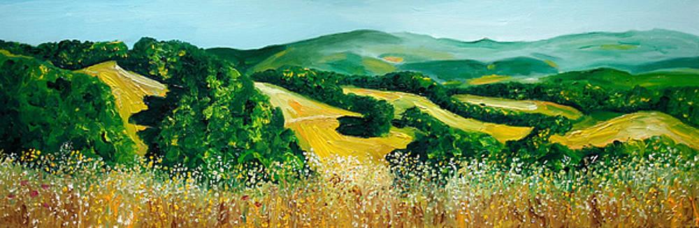 Tuscany by Nancy Van den Boom