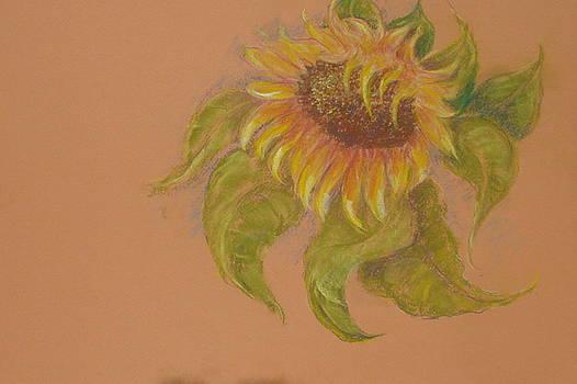 Tuscany Sunflower Images by Phyllis OShields