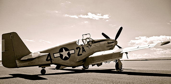Tuskegee Airmen Vintage P51 Mustang Fighter Plane by Amy McDaniel