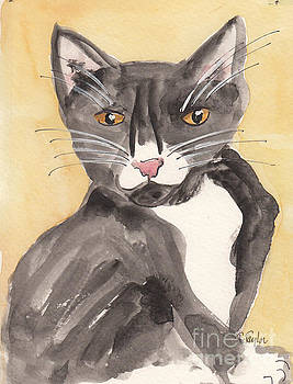Tuxedo Cat with Attitude by Terry Taylor