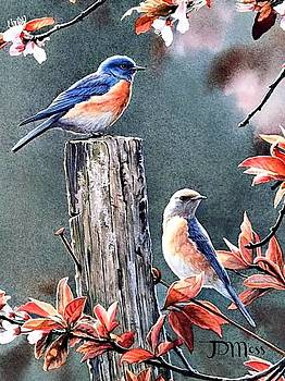 Tweeting by Janet Moss
