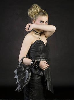Twilight by Dean Bertoncelj