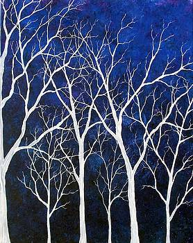 Twilight Forest by Sabrina Zbasnik