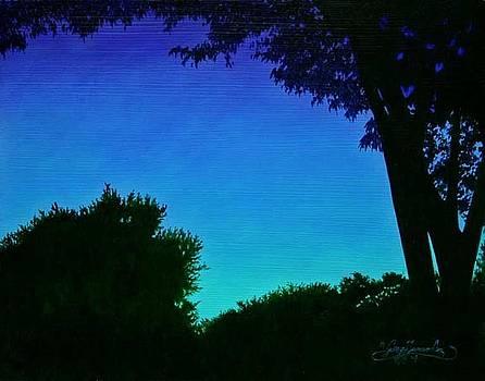 Twilight by Gary  Hernandez