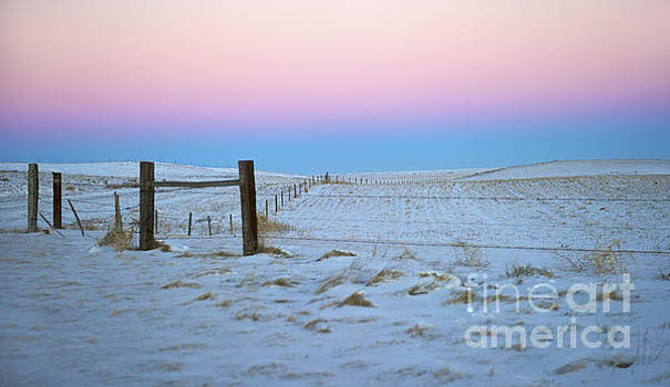 Twilight... by Nina Stavlund