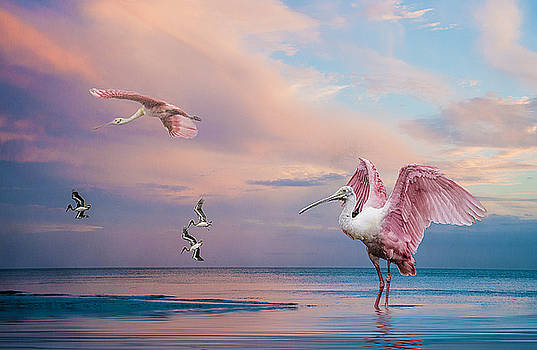 Twilight on The Gulf by Brian Tarr