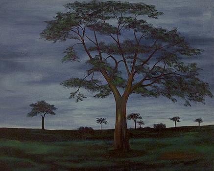 Twilight on the Savannah by Richard Beauregard