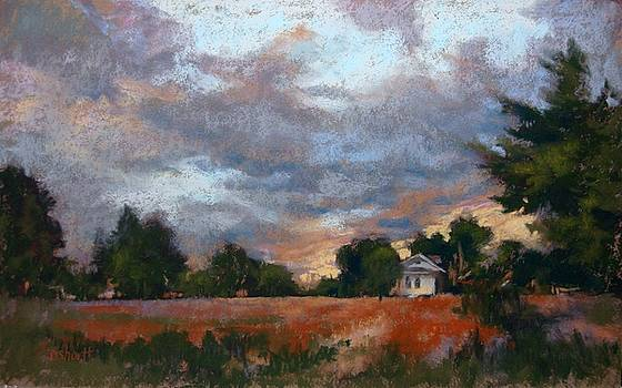 Twilight Skies by Donna Shortt