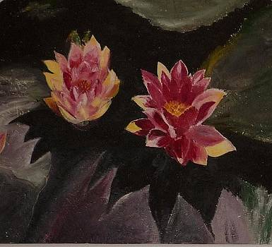 Twin lotuses by Nalini  Bhat