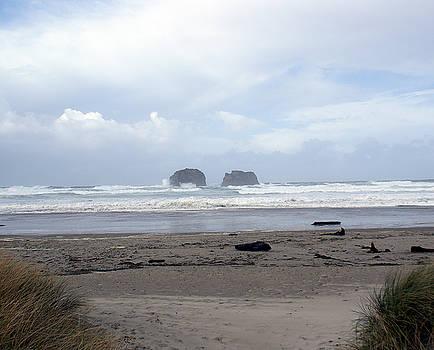 Twin Rocks  by Rex E Ater