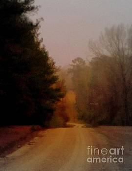 Louisiana Rural Country Road At Twilight by Michael Hoard