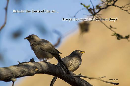 Two Birds by Atul Daimari