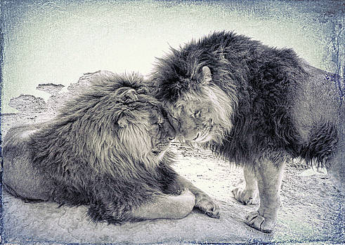 Two Brothers by OLenaArt Lena Owens
