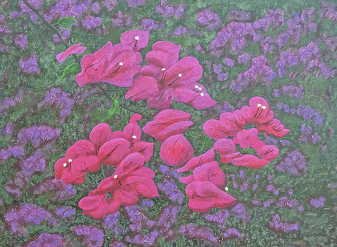 Two Layer Bougainvillea by L J Oakes