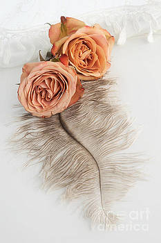 Two Old English Roses and Feather by Ann Garrett