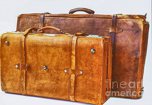 Patricia Hofmeester - Two old leather suitcases