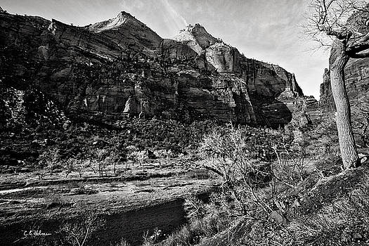 Christopher Holmes - Two Peaks - BW